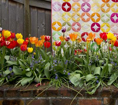 oriel_tulips_IMG_1815